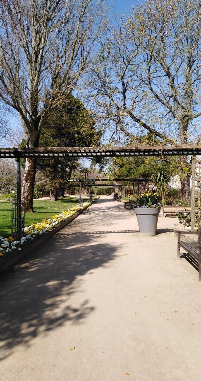 park walkway path